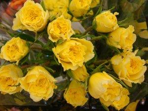 bouquet-yellow-roses-dsc00909